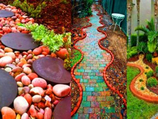 Herbs In Garden Design