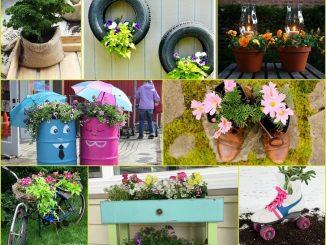 Unique Container Gardening Ideas Exposed