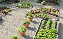 backyard vegetable gardening ideas
